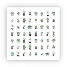 ONIQ, Слайдер-дизайн Transfer, Botanist №5