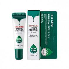 восстанавливающий бальзам для губ с центеллой азиатской farmstay cica farm nature solution lip balm